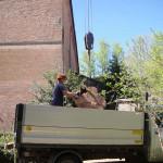 Movimentazione tronchi