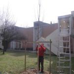 Posizionamento dei pali tutore