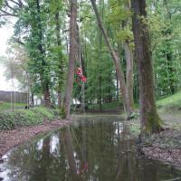 CREMONA: Risalita su Querce secolari in parco storico